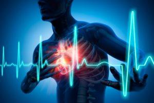 Herzrhytmus
